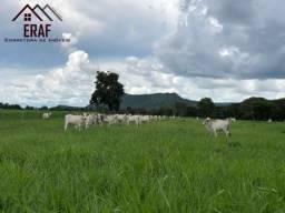 Fazenda próximo á Vila Boa - GO
