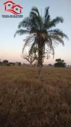 Fazenda Município De Santa Vitória MG