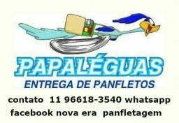 Panfleteiro sp