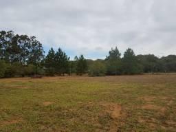 Velleda oferece campo de 2 hectares totalmente plano, próximo a comércios