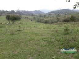 Velleda oferece B.A.R.B.A.D.A Fazenda de 160 hectares espetacular para gado