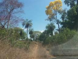 Fazenda em Araguacema-TO. Beira Rio/Plana. Só 20 Mil/Alq