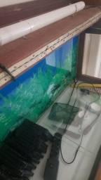 Aquario 200 litros