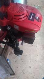 Motor 4.0 búfalo pantaneiro apenas 1300