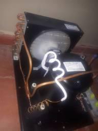 Motor geladeira/ câmera fria