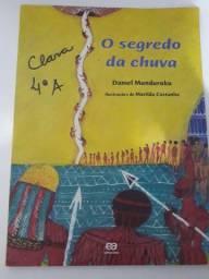 Livro infantil - O Segredo da Chuva