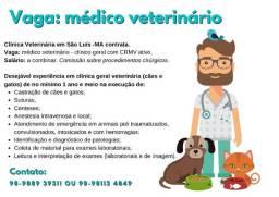 Clínica Veterinária em São Luís -MA contrata