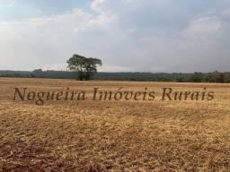 Título do anúncio: Fazenda com 149 alqueires usada na agricultura, oportunidade (Nogueira Imóveis Rurais)