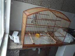 Gaiolao pássaros