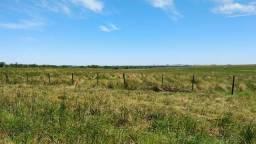 Area Preservação Permanente - APP