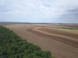 Fazenda 520 Alqueires 30 km de Londrina ( Lavoura )