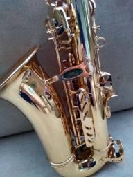 Saxofone Alto - marca Weril Spectra