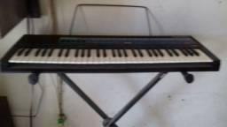 Órgão  e teclado CASIO