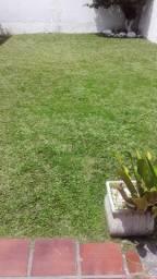 Jardim Art