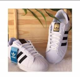 Tênis Adidas Superstar Novo