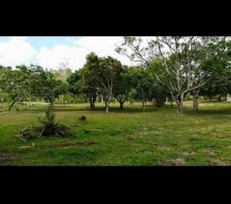 Vendo sítio 2 hectares