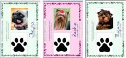 Rg Pet - Documento para seu bichinho