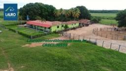 Fazenda com 5.150 hectares em Januária - MG