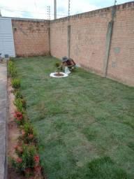 Grama Esmeralda Jardinagem e Paisagismo