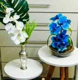 Kit pra decoração  de  salas escritórios ou varandas