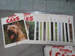 Coleção Nossos Amigos Os Cães (65 Revistas + Poster).