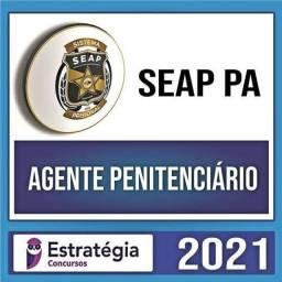SEAP PA 2021- Estratégia