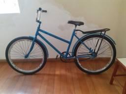 Bicicleta cargueira.