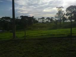 Sítio 10 hectares em Lajes-SC