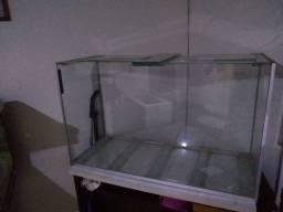 Aquario Só O Vidro