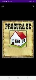 Procura casa pra alugar