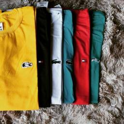 Camisas Básicas Fio.30