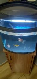 Aquario boyu 40 litros