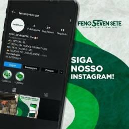 Feno Sevensete