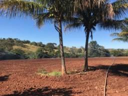 Chácara Ideal para Plantio - Casa Simples e Córrego