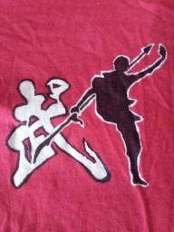 Aulas de kung fu