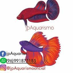 Jp Aquarismo