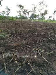 Fazenda 40 alqueires em Paraíso do Tocantins