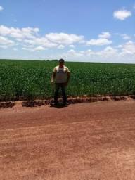 Fazenda para Arrendar em Tocantins