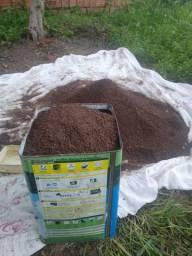 Vendo terra preta preparada e adubada, para o plantil.
