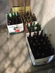 Cascos de cerveja
