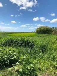 Velleda oferece área 27 hectares, com outorga e escritura, ideal para plantio