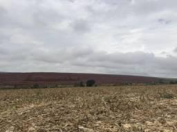 Fazenda 430 alqueires 80 km de Londrina