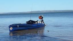 Caique freeport gamefish 325