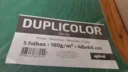 Papel Cartolina 48x66 180g Verde - Spiral PT 5 UN
