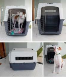 Caixa de transporte para cachorro