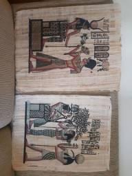 Título do anúncio: Papiro