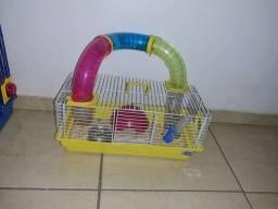 Hamster com casinha