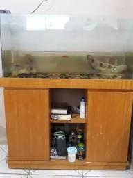 Aquario 150 litros