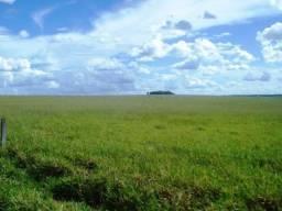 Fazenda de 34385 hectares em MT