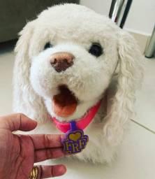 Cachorro 50